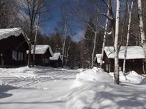 冬のCコテージ(イメージ)