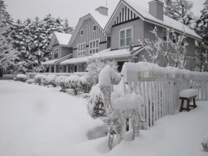 アメリーハウス冬 早朝