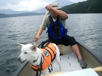 野尻湖でカヌー犬バイクと
