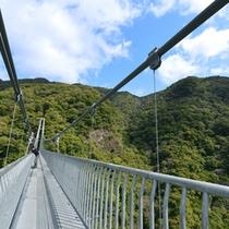 *○周辺観光○照葉大吊橋 ※「綾の旅札」で入場できます