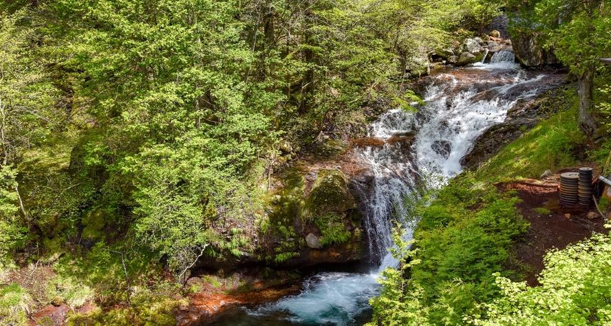 *【和室8畳(滝・渓流側)】おしどり隠しの滝・眼下を流れる渓流