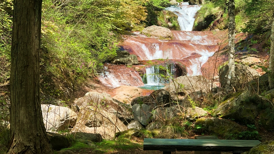 *【周囲の自然】おしどり隠しの滝(宿の隣)