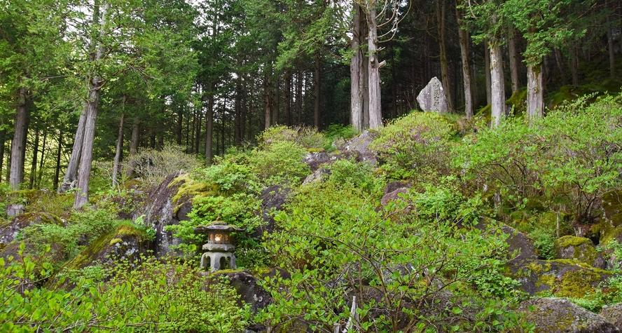 *【中庭】130万年前に噴出した溶岩石がゴロゴロと積み重なり、苔や緑の木々に彩られています。