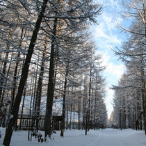 冬のコテージ