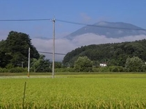 黒姫山と黄金色の田んぼ