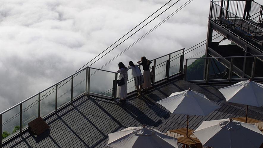 【ソラテラス】雲海は圧巻!