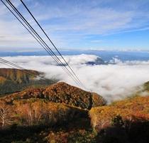 「ソラテラス」紅葉と雲海の素敵なコラボレーション