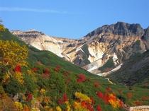 十勝岳温泉の紅葉