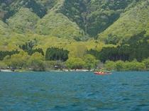萌ゆる奥琵琶湖畔
