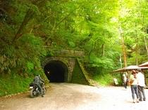観光:旧天城トンネル・夏