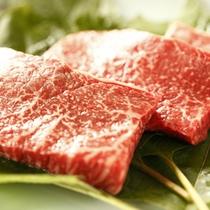 料理一例(肉)