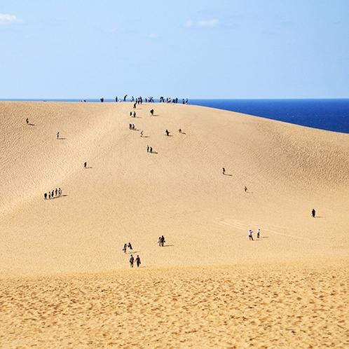 【鳥取砂丘】山陰海岸ジオパークスポット!日本最大級の砂丘からの景色は圧巻(当館より車で約110分)