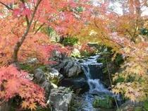 依水園紅葉2