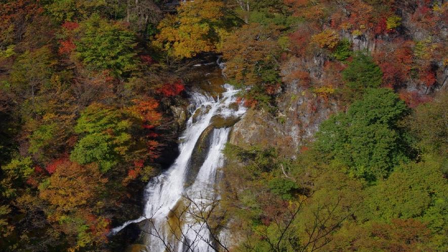 霧降の滝 紅葉