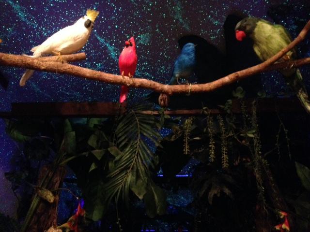 プチ個室 ジャングルと星空