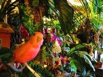ジャングルゾーン