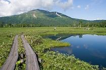 尾瀬と至仏山