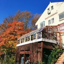 おもちゃばこ外観(秋)客室から紅葉が臨めます。