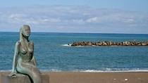 鵜の浜海岸1
