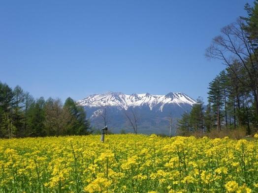 【露天風呂付和室で叶える優雅な休日】満天の星空と雄大な木曽御岳山を眺めながら!