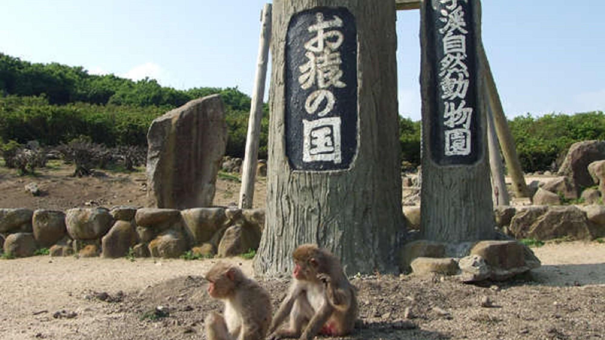 銚子渓お猿の国