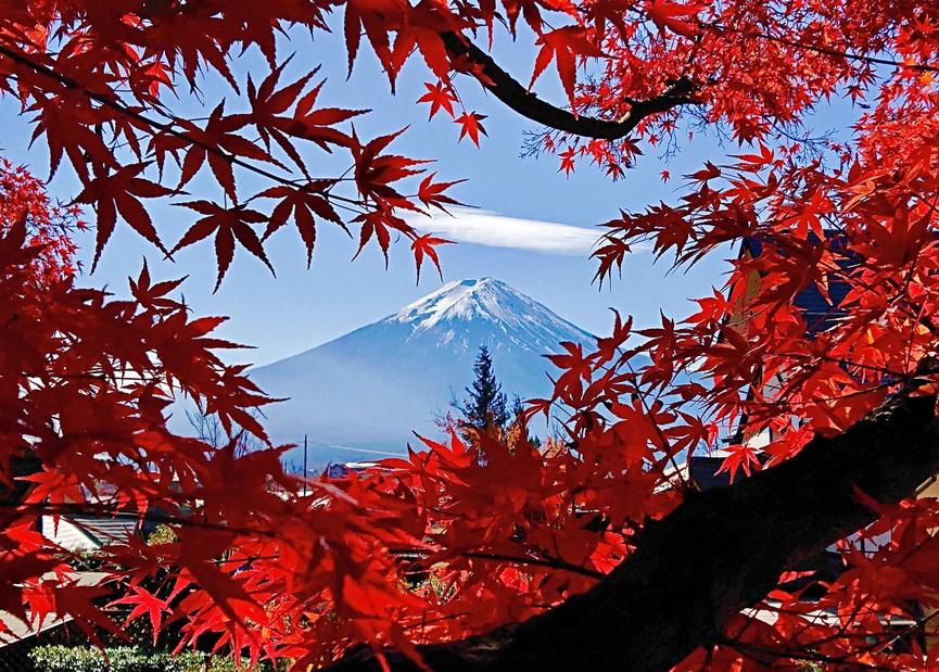 美しい紅葉シーズン