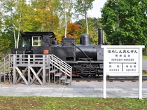 【ホテル敷地内】日本最古の小型蒸気機関車「クラウス15号」