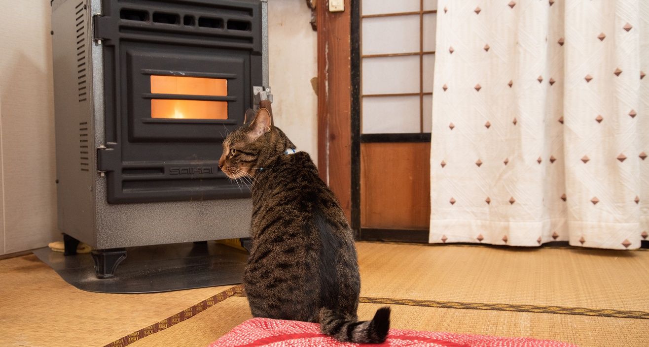 *冬場はストーブの前が定位置です。ゆるり一緒に温まる時間も贅沢です。