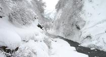 *清津峡(冬)*清津峡(冬)  美しい白銀の世界へと変わった日本三大渓谷「清津峡」。
