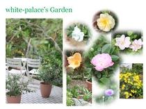 *白子ホワイトパレス_garden_5月