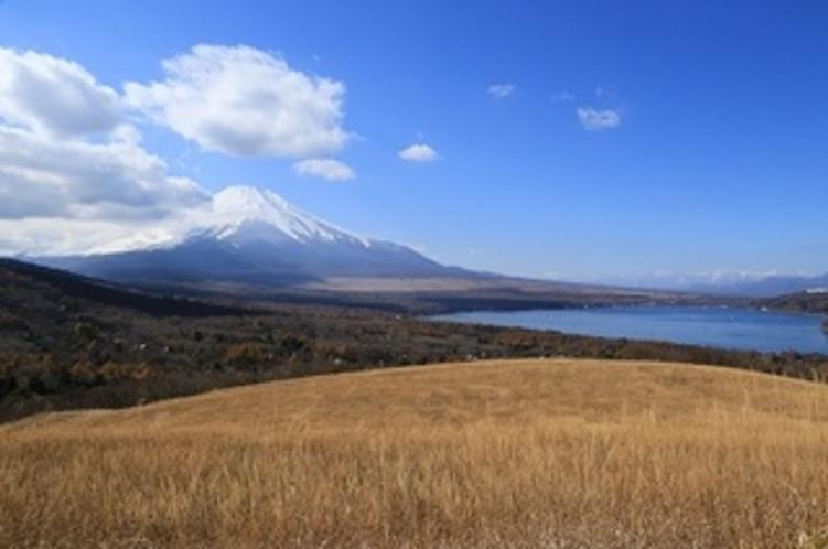 パノラマ台からの富士山