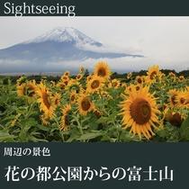 ▼花の都公園からの富士山