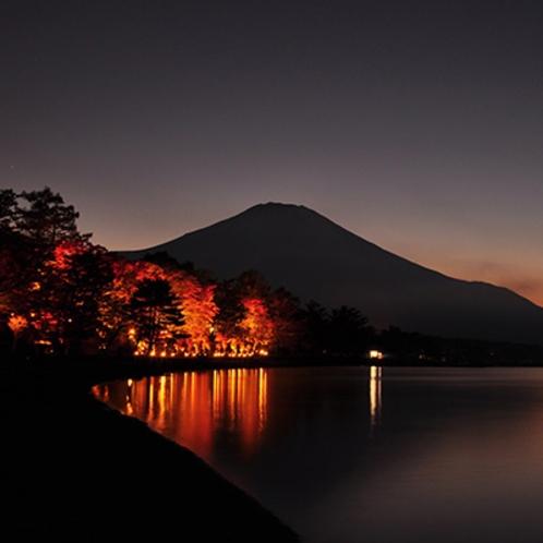 夕焼けの渚・紅葉まつり(例年10月中旬頃~11月中旬)