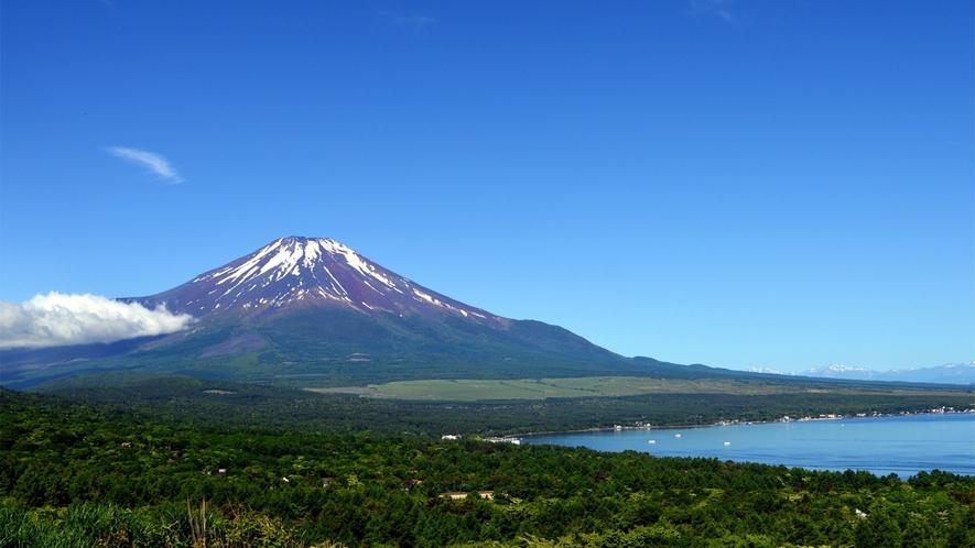 ○パノラマ台からの富士山
