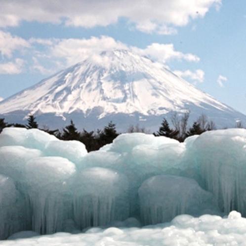 西湖樹氷まつり(例年1月~2月)