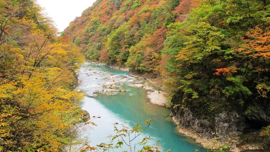 抱返り渓谷の美しい紅葉