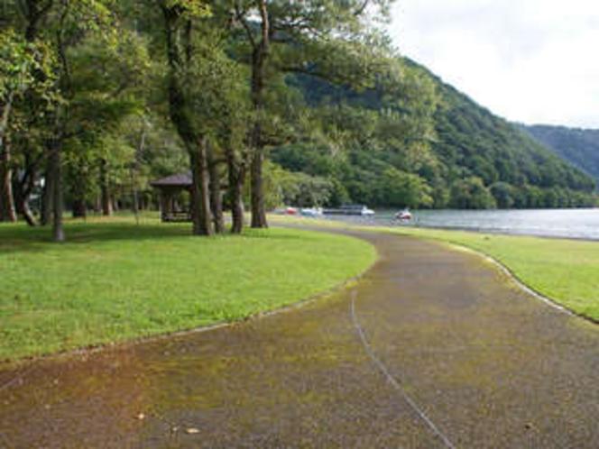 十和田湖畔の遊歩道