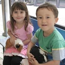 □茶臼山動物園で・・・うさぎ抱っこの子供