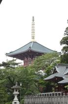 【成田山新勝寺】