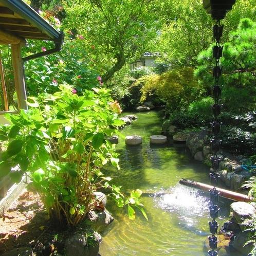 日本庭園内の鯉を是非ご覧くださいませ