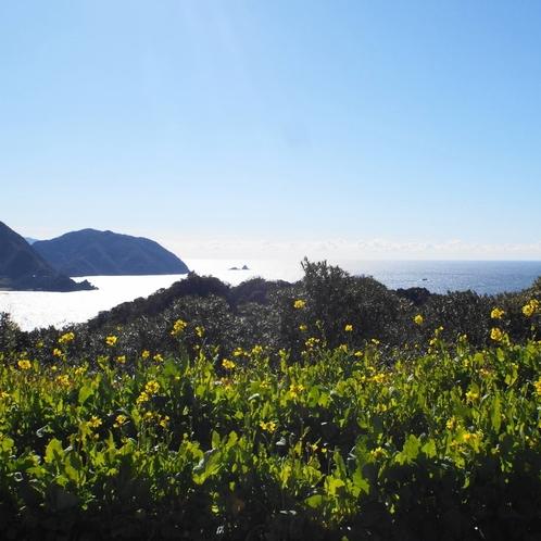 恋人岬からの眺望