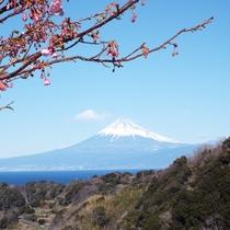 恋人岬から眺める富士山