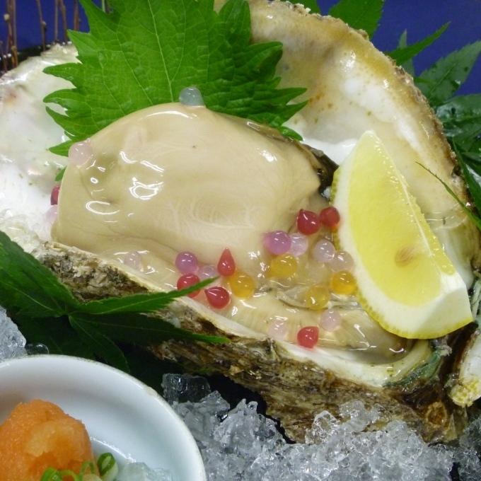 【料理一例】夏の味覚「岩ガキ」相差・畔蛸産の岩ガキは東京でも高値で取引されています!