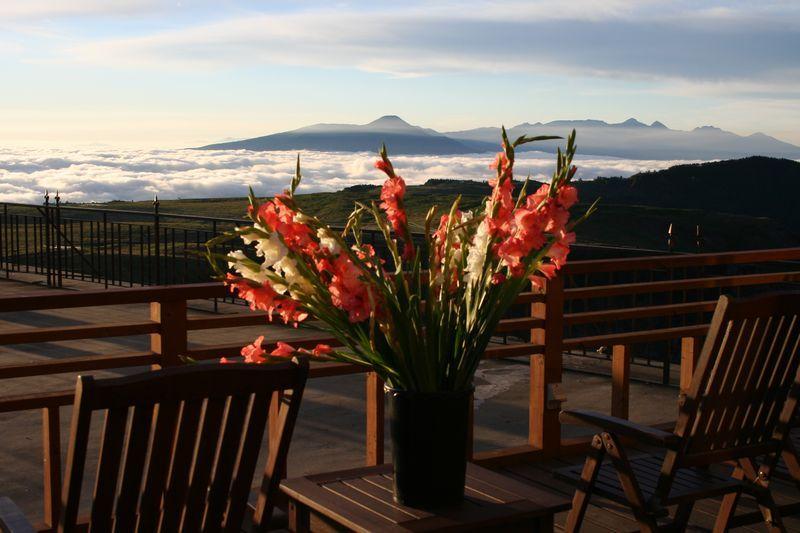 ホテルテラスから望む景色