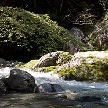【周辺】大自然を満喫ください