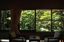 16号室からの景色