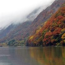 *【紅葉】水面に映る紅葉が美しい最上峡。