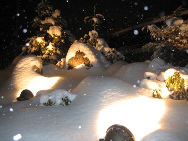 雪景色Ver1