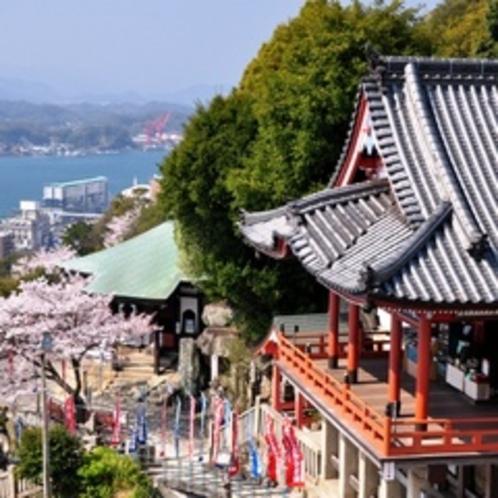 【春の千光寺本堂】千光寺山ロープウェイから見下ろした、桜に彩られた千光寺本堂です。
