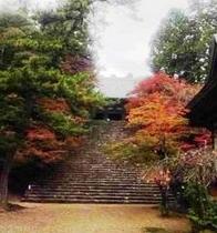 金堂への階段